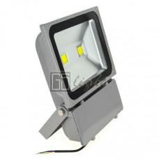 Светодиодный прожектор 100W-2LED IP65 220V White